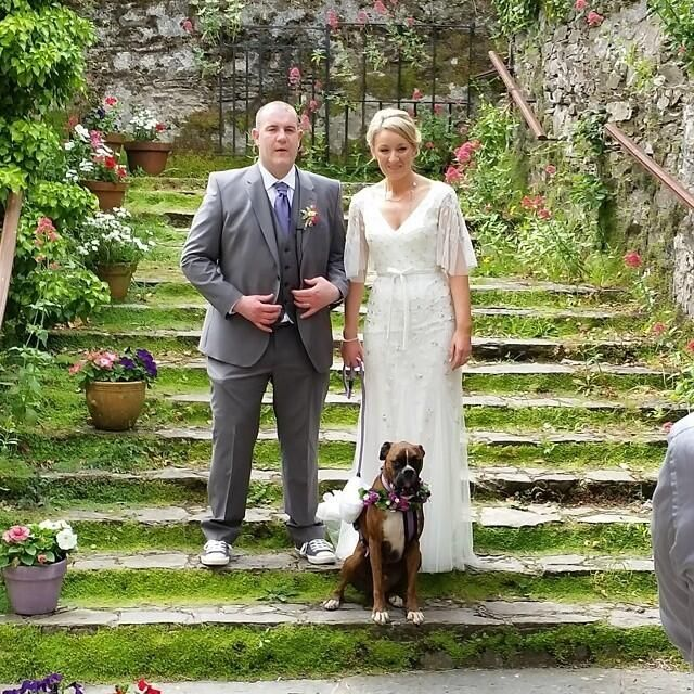 Can I Have My Dog At My Wedding