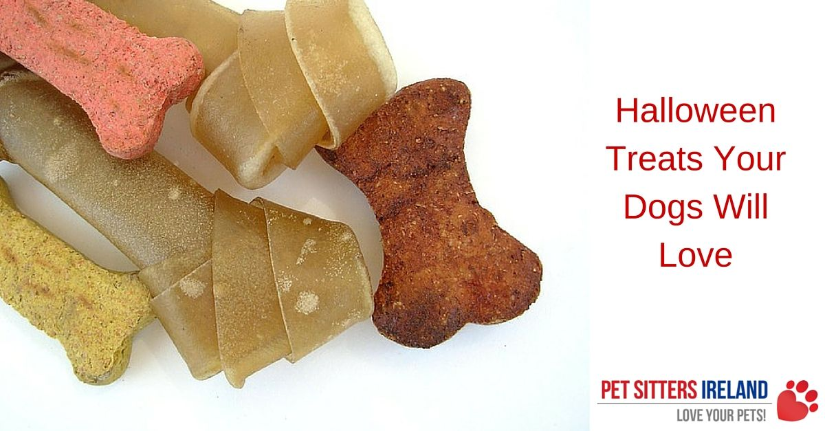 Halloween Treats Your Dogs Will Love