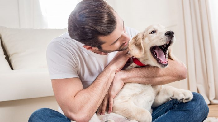 Pet Sitter Cost