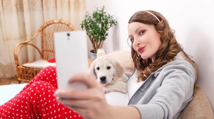 Take the Perfect Picture of Your Dog