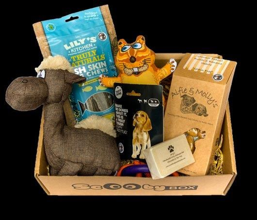 Scooby Dog Treat Subscription Box