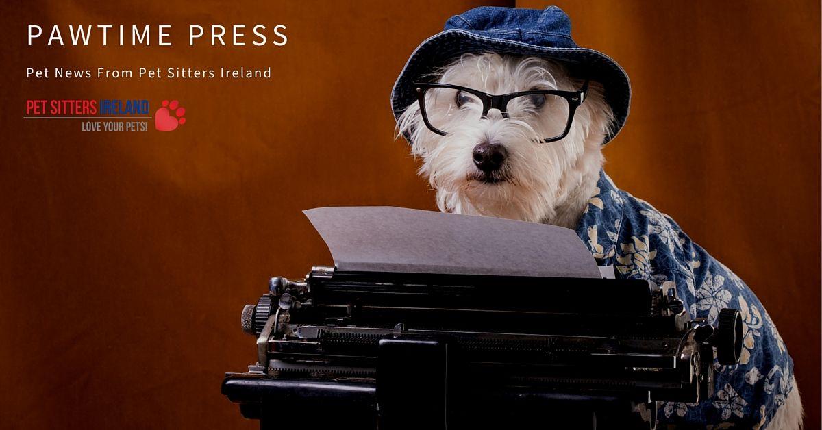 Pawtime Press