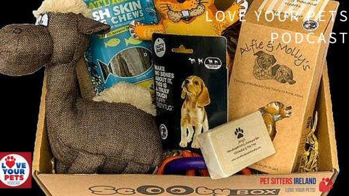 Dog Subscription Box In Ireland