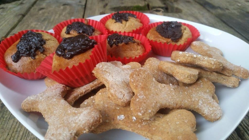 pet treats review of pawbakes bake your own pet treats