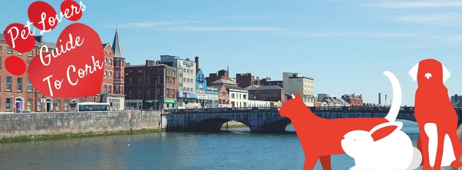 Pet Owners Guide To Cork