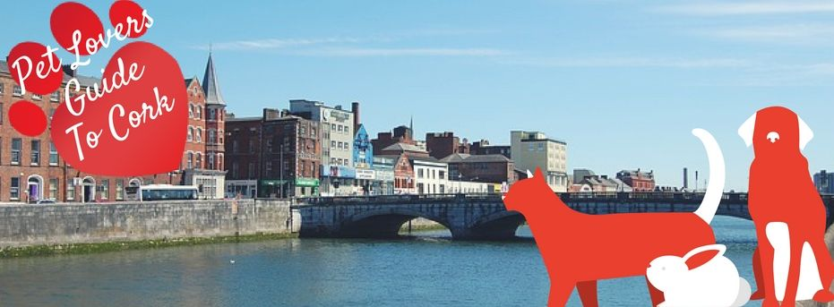Pet Lovers Guide To Cork