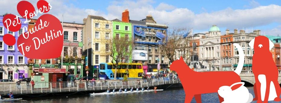 Pet Lovers Guide To Dublin