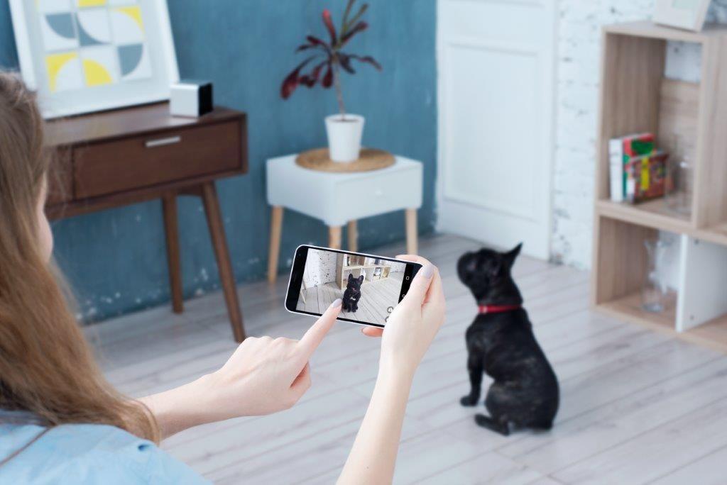 Petcube Pet Camera