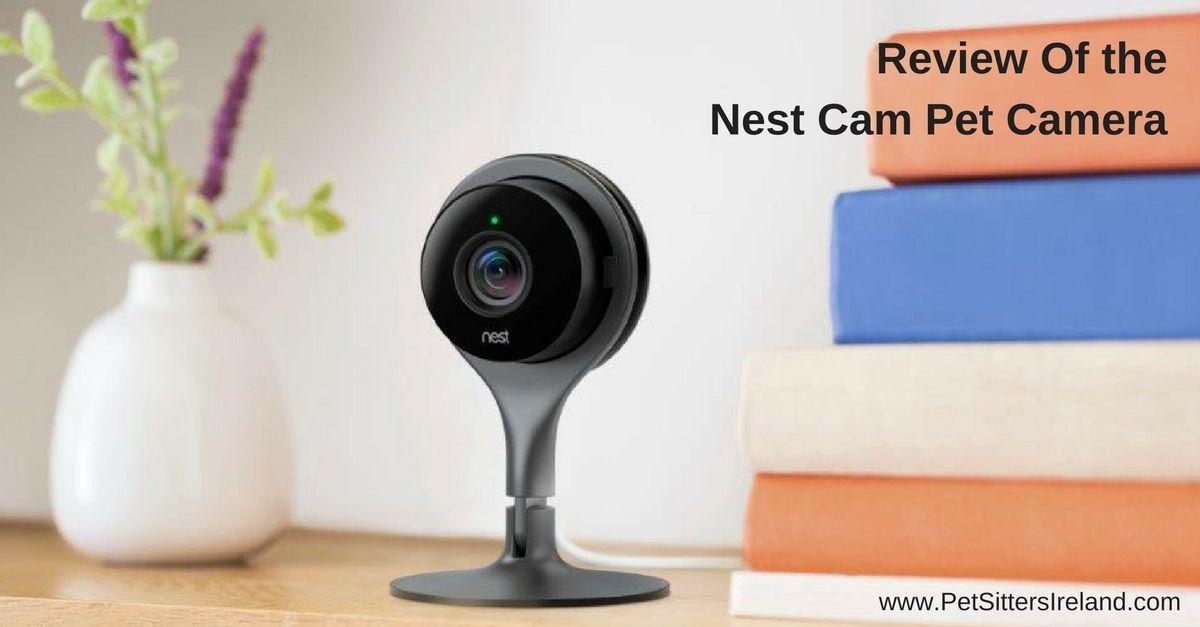 Review Of Nest Cam