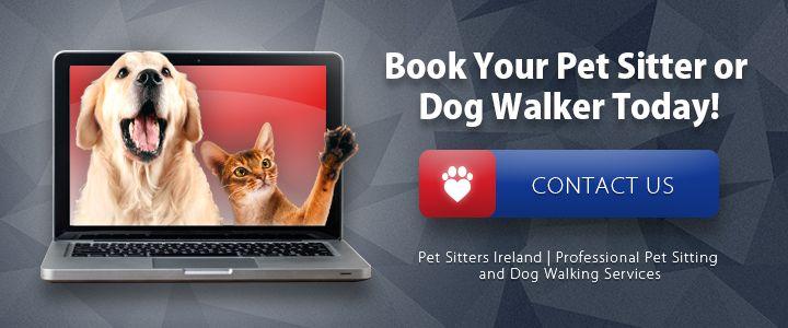 book-a-pet-sitter-dog-walker