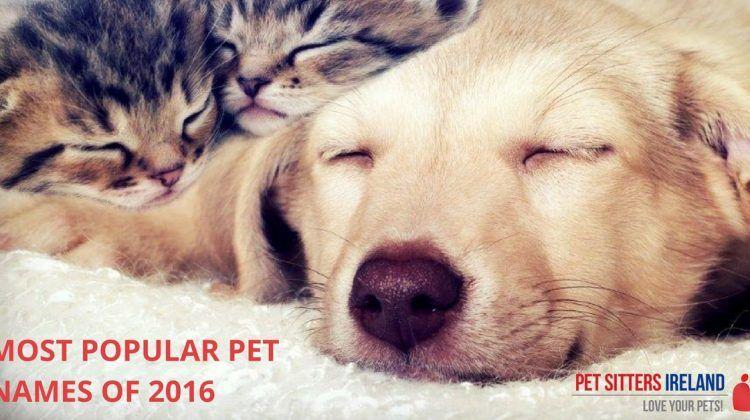 Most Popular Pet Names Of 2016