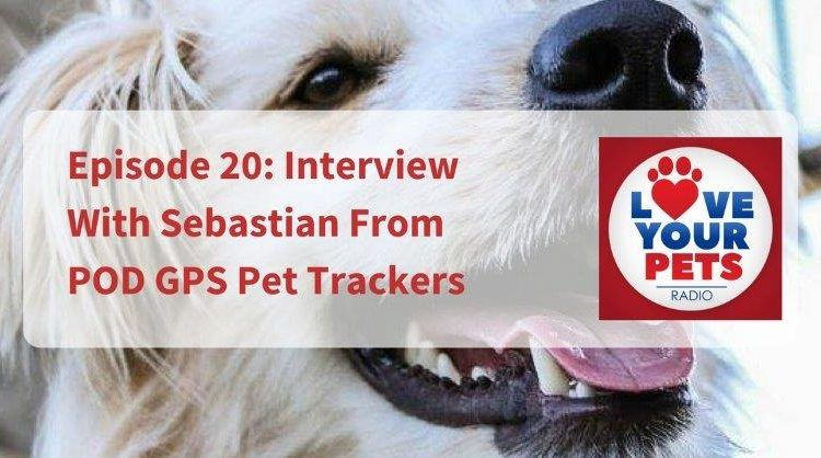 Interview With Sebastian From POD GPS Pet Trackers