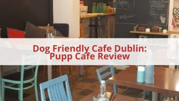 Dog Friendly Cafe Dublin