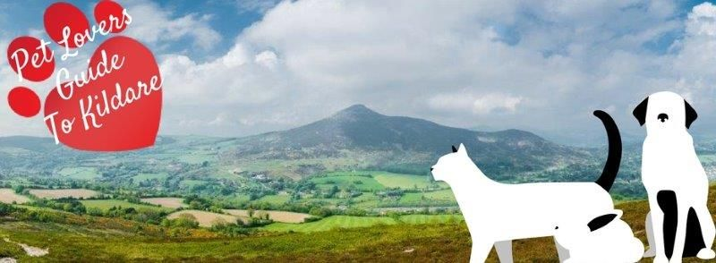 Pet Lovers Guide To Kildare