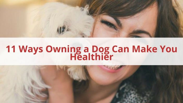 Dog Can Make You Healthier