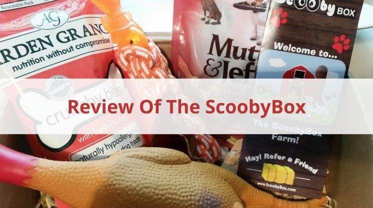 ScoobyBox