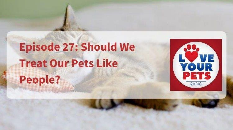 Should We Treat Our Pets Like People