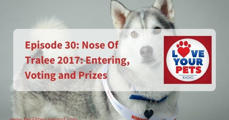 Nose Of Tralee 2017