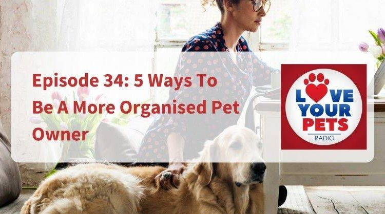 5 Ways To Be A More Organised Pet Owner