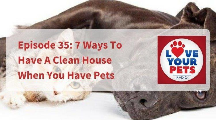7 Ways To Have A Clean House When You Have Pets