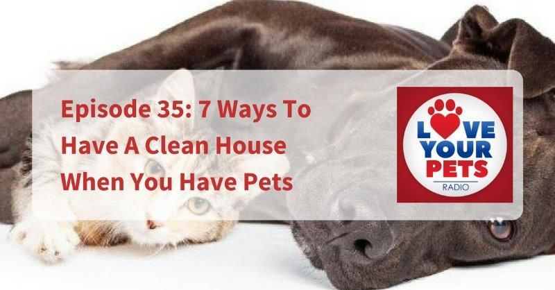Episode 35 7 Ways To Have A Clean House When You Have