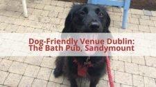 Bath Pub Dog Friendly Pub
