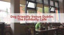 Dog Friendly Venue Fumbally.