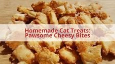 Homemade Cat Treats