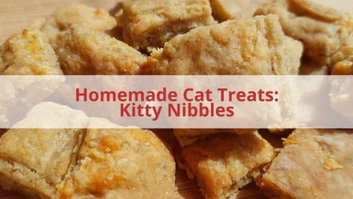 Homemade Tuna Cat Treats
