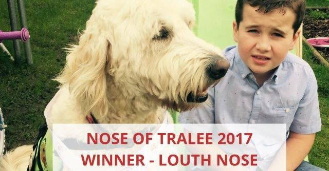 Nose Of Tralee 2017 Winner