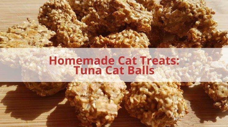 tuna homemade cat treats