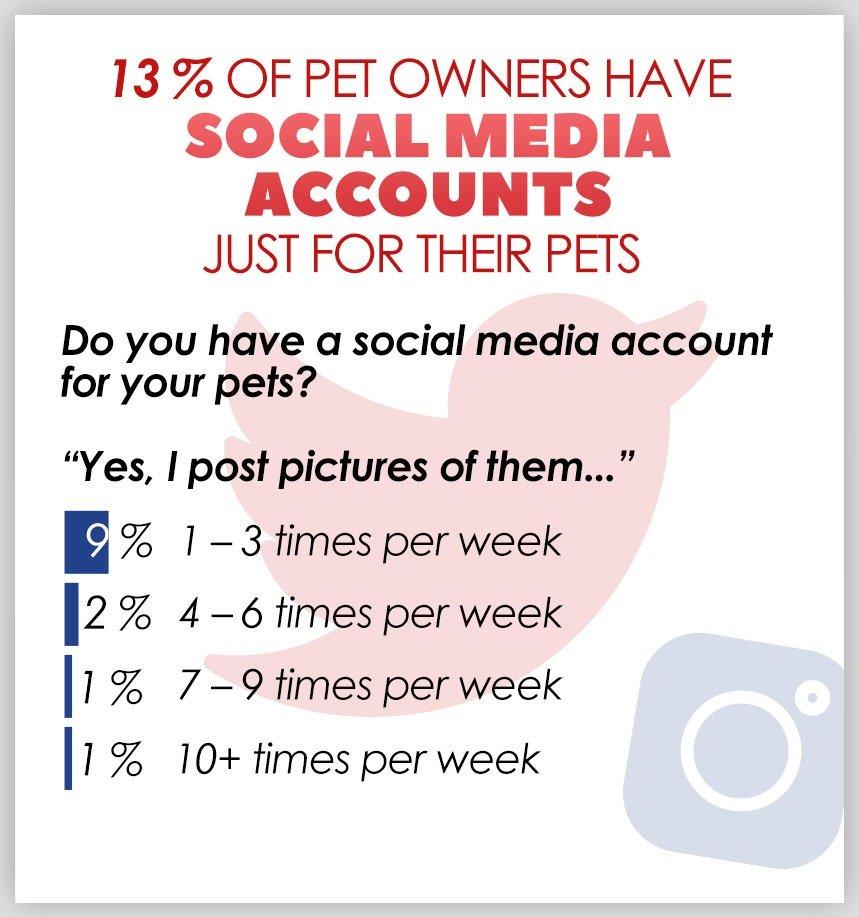 Pets With Social Media Accounts