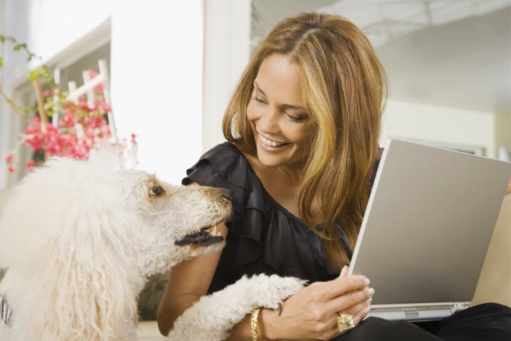 Pet Sitters Ireland Franchise