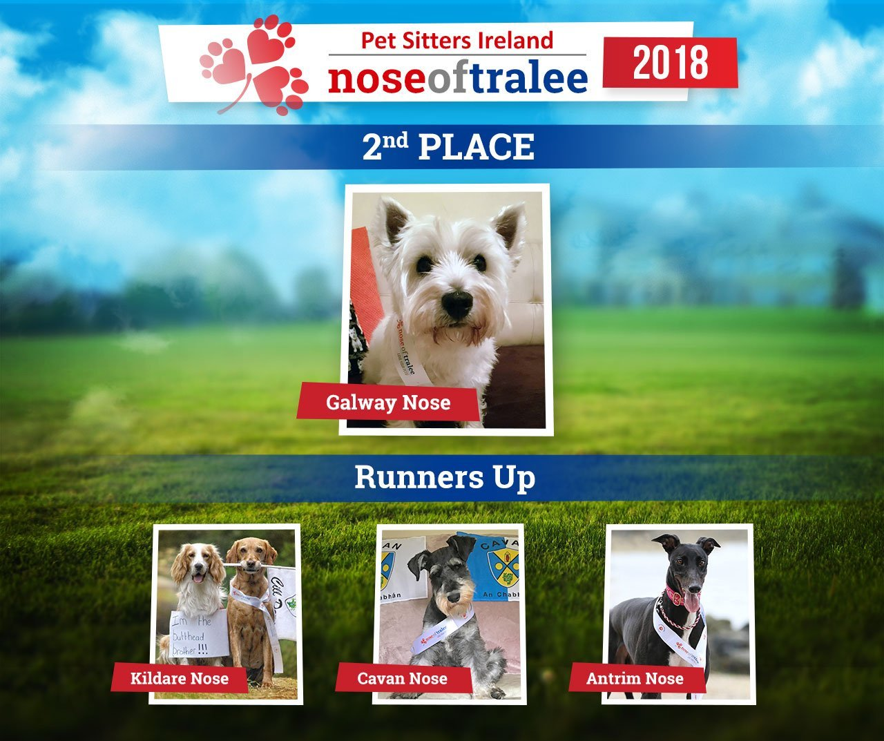 Nose Runner Up