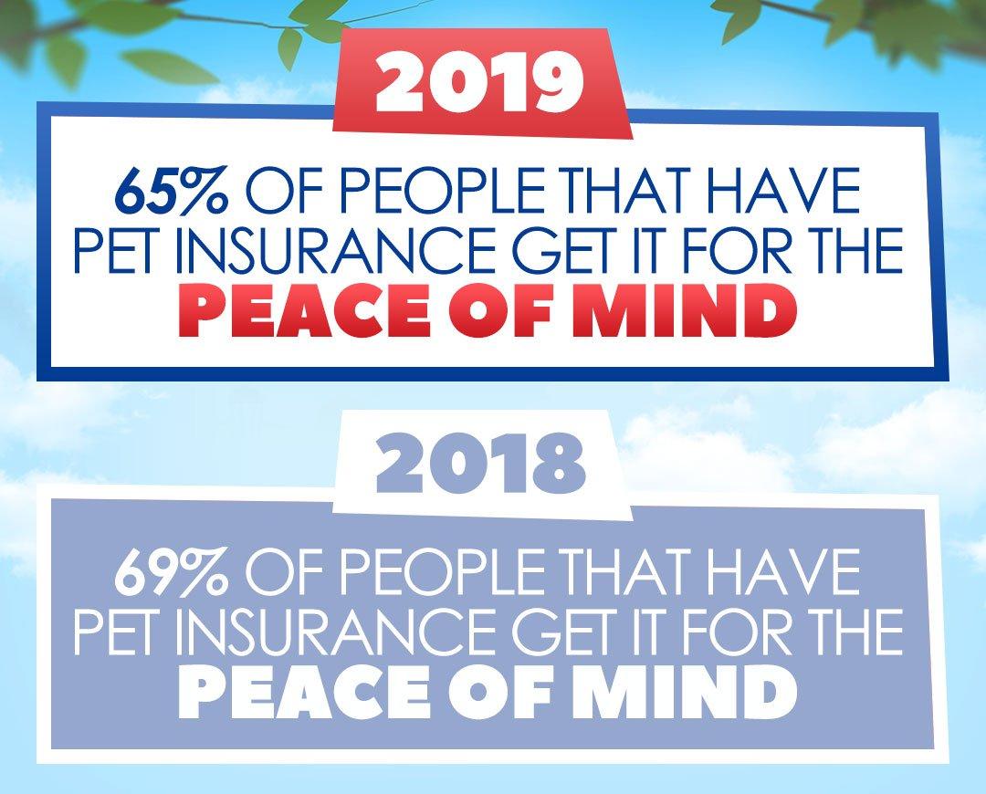 Pet Insurance Peace Of Mind