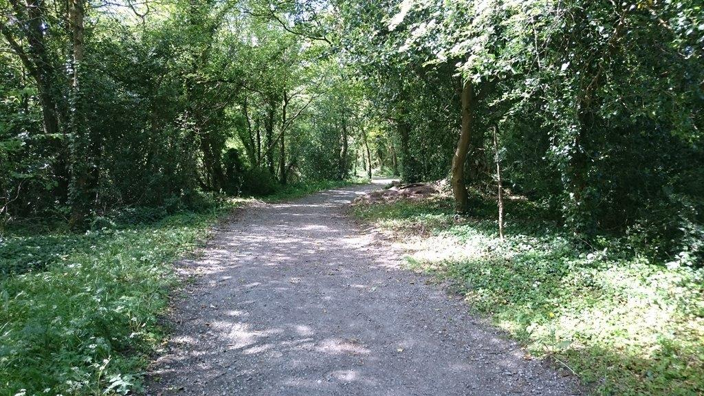 Portlick Millennium Forest Park