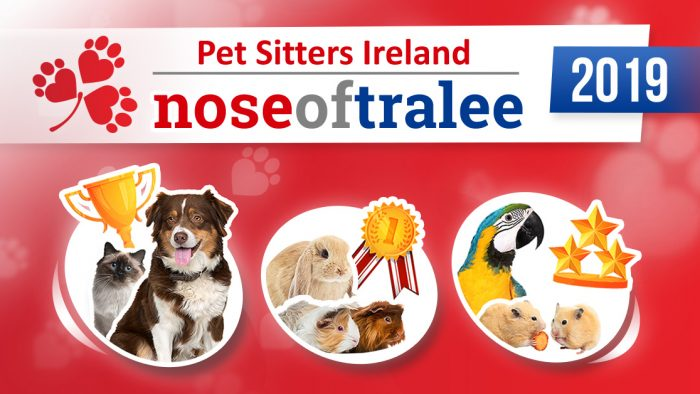 Nose of Tralee 2019