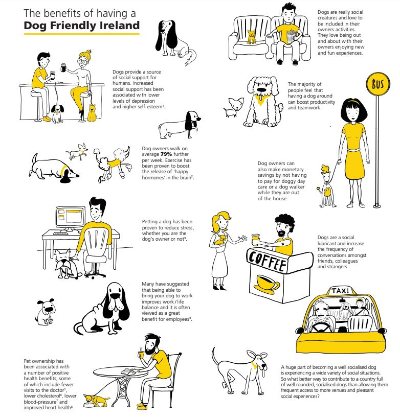 Dog Friendly Ireland Dogs Trust