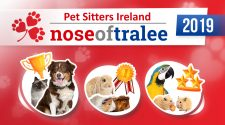 nose_of_tralee_