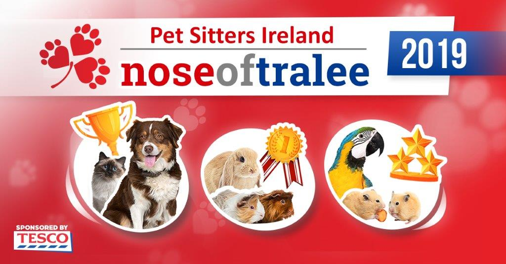 nose_of_tralee
