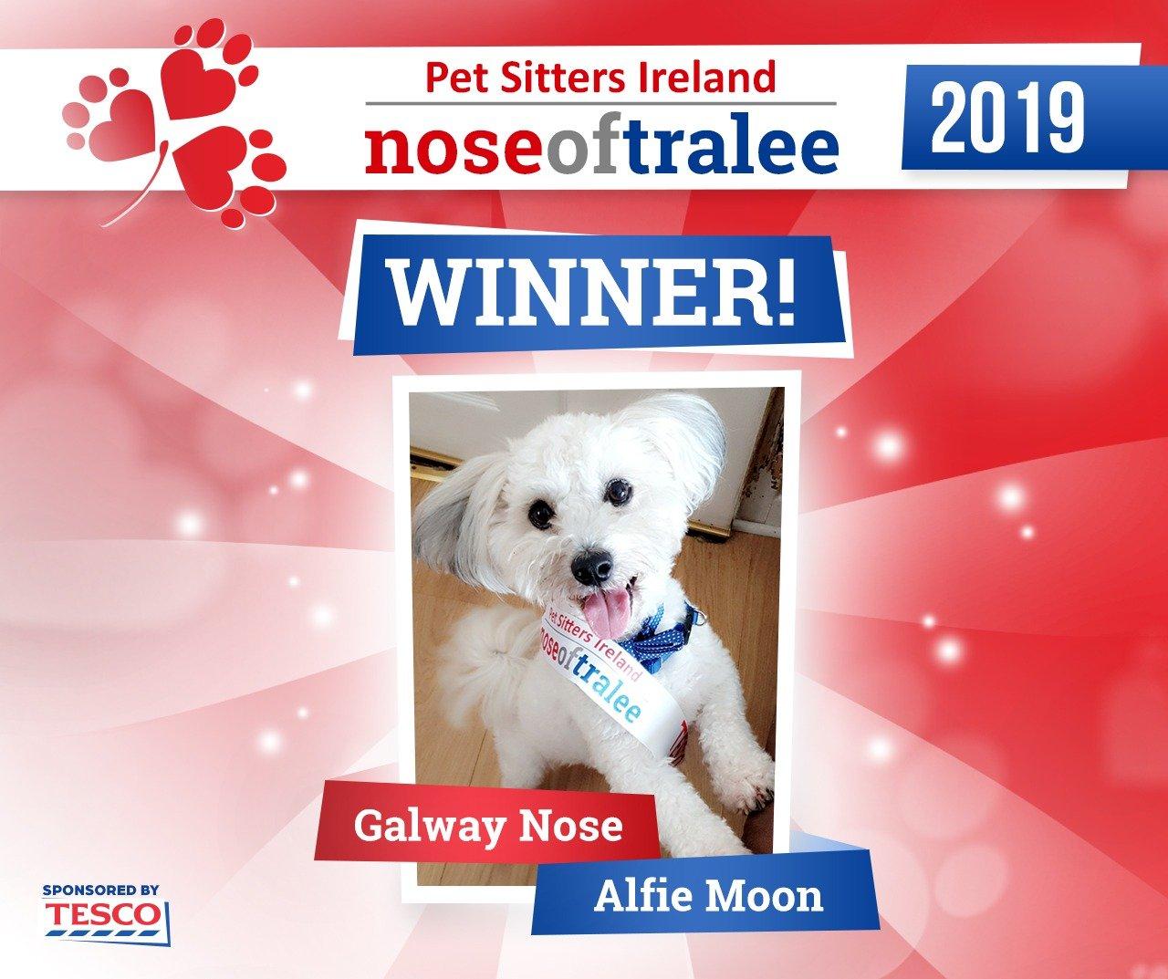 Nose of Tralee 2019 Winner