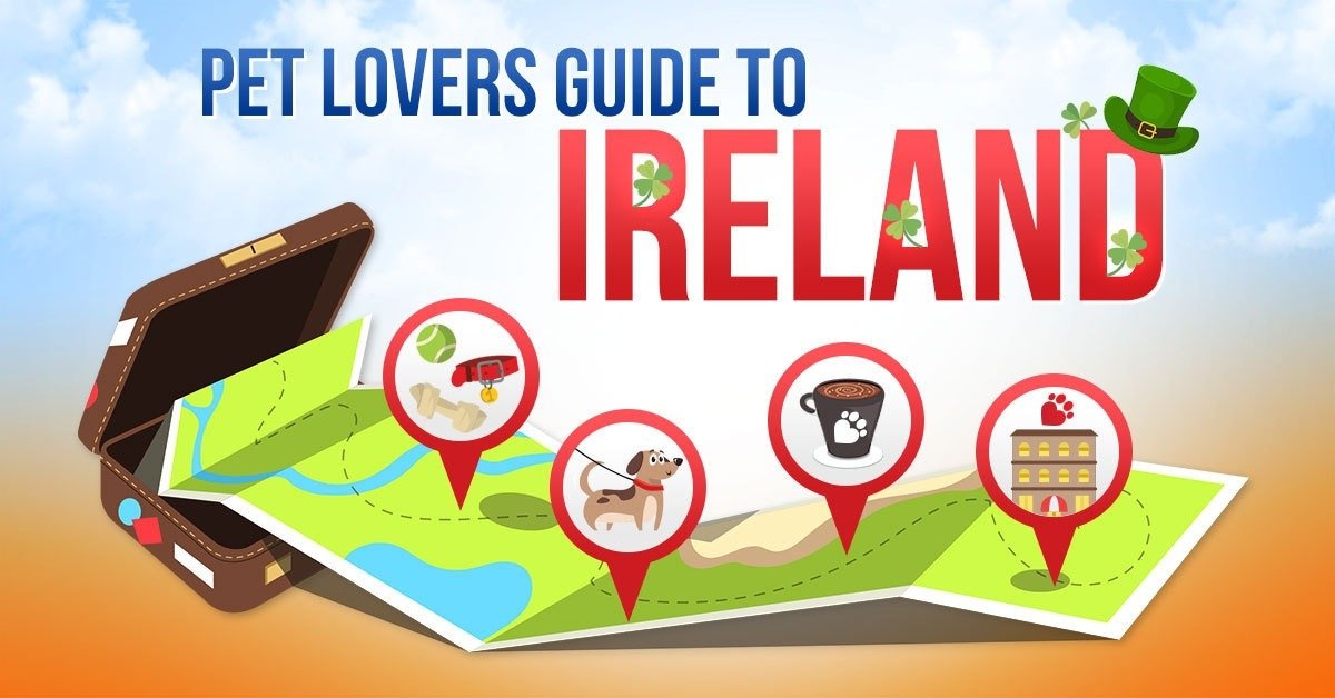 Pet Lovers Guide To Ireland